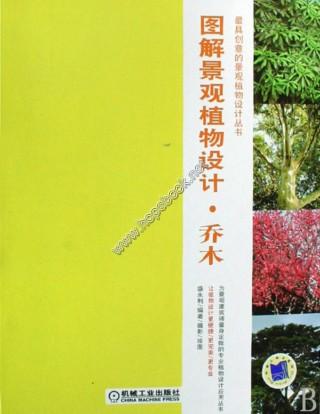 刺槐手绘图