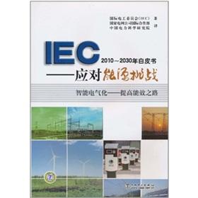 IEC2010~2030年白皮书:应对能源挑战